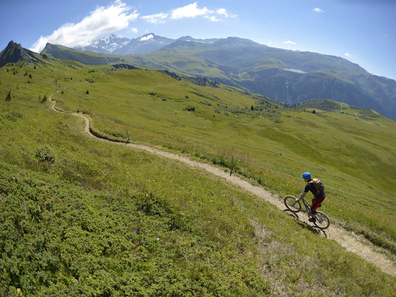 back-country-mountain-biking